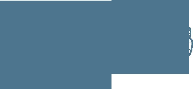 View leg auto